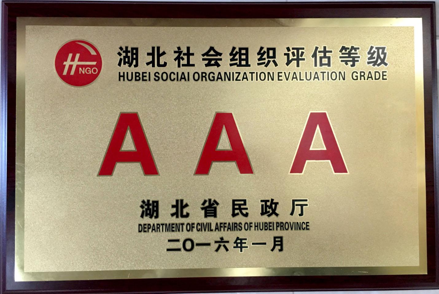 湖北社会组织评估AAA等级证书-铜牌