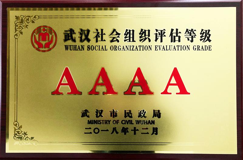 湖北社会组织评估AAAA等级证书-铜牌